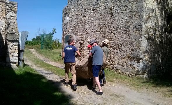Les élèves en chantier-école archéologique à Jouars-Ponchartrain