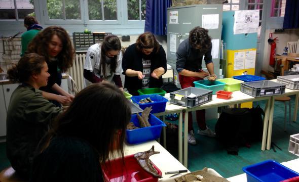 Stage des élèves de première année à l'Unité archéologique de Saint-Denis